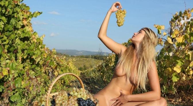 Australiano colhe uvas nu durante a lua cheia